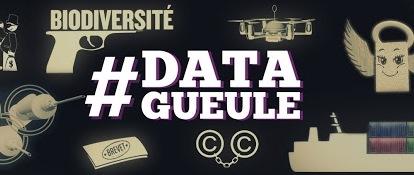 DataGueule